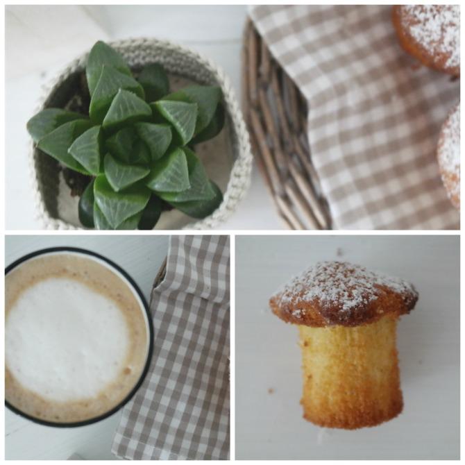 Sukkulenten und Muffins