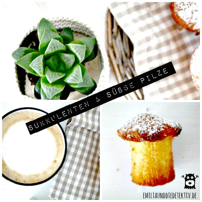 Pilzmuffins_sukkulenten