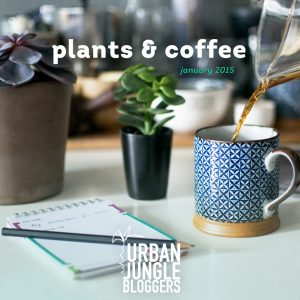 Urban Jungle Bloggers Coffee & Plants