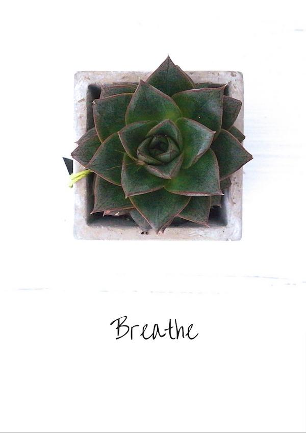 Breathe Zeit